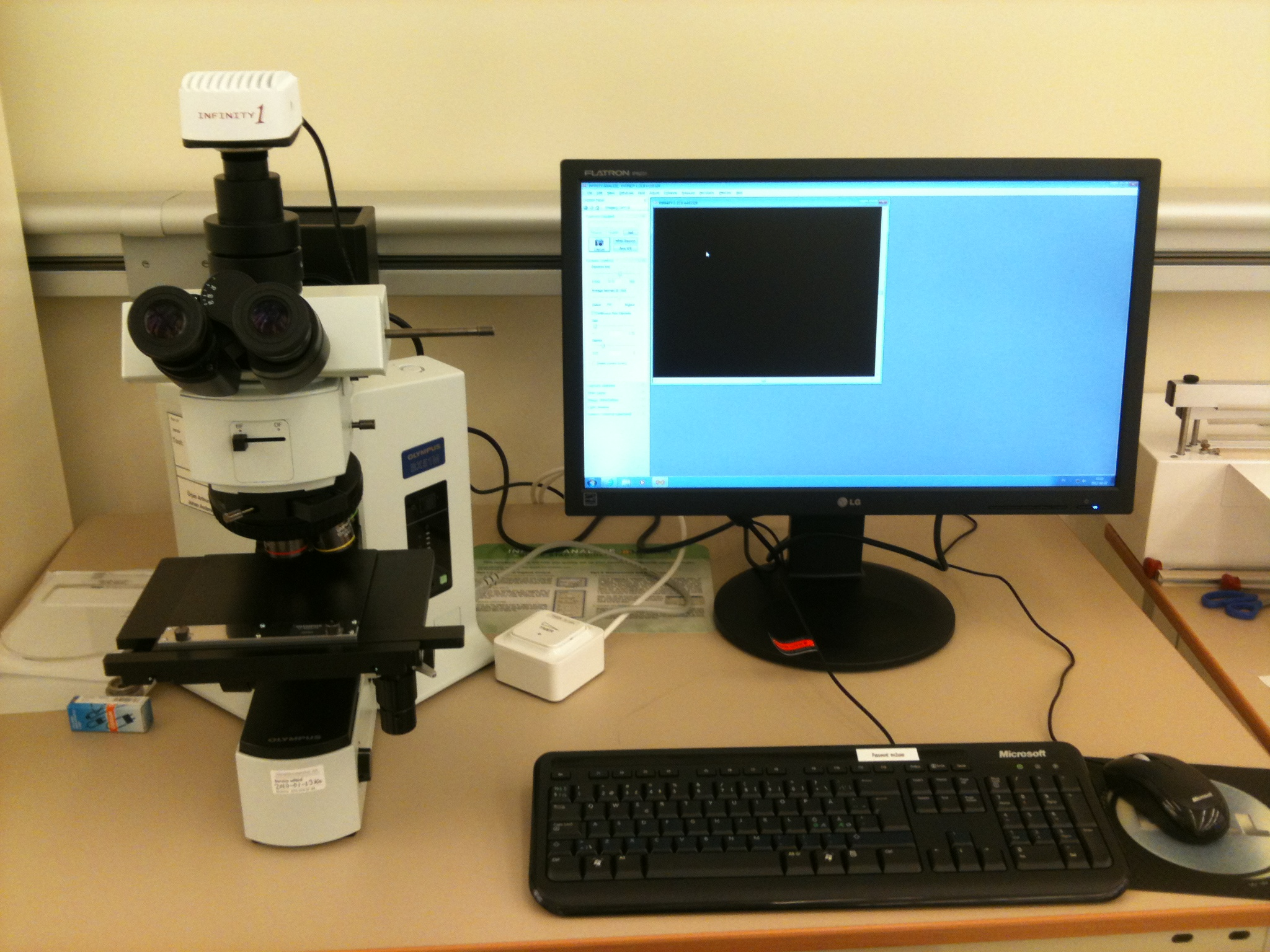 Picture of Microscope - Olympus BX52